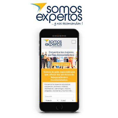 sitio-web-somos-expertos