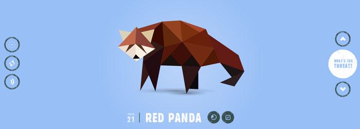 exhibicion-panda-1